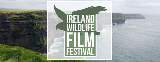 Ireland Wildlife Film Festival 2019 - Facebook