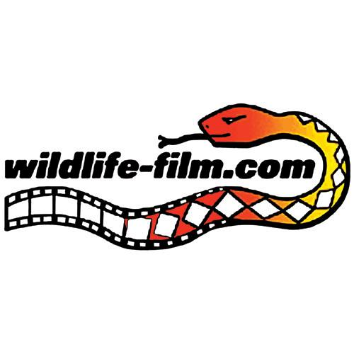 Wildlife-film.com - Wildlife, Natural History, Environmental, Conservation & Vegan Film News and Information