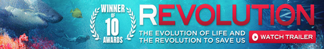 REVOLUTION - The movie