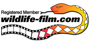 Wildlife-film.com Registered Member Logo!