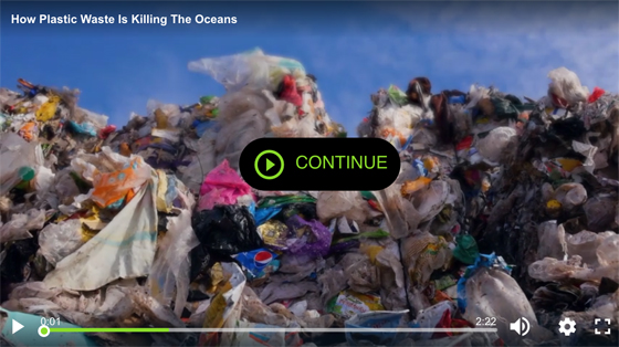 Newsweek - How plastic waste is killing the Oceans
