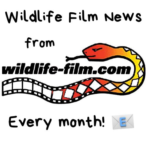Wildlife Film News - every month!